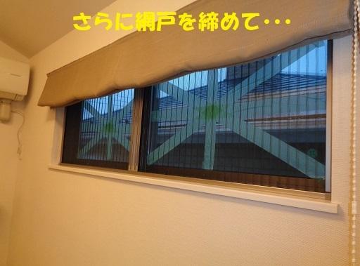 f0121712_18340173.jpg