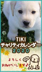 続 最終ブログにはならなかった長崎盲導犬失踪事件 ワンコの