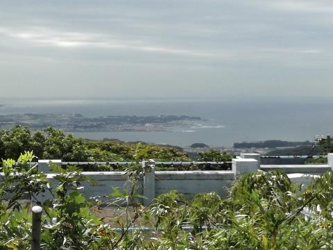 三浦半島横断山歩き_d0159325_20132140.jpg