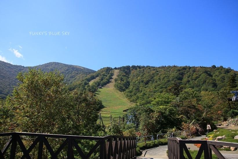 山で、の~~ん び~~り~~~^^_c0145250_08482737.jpg