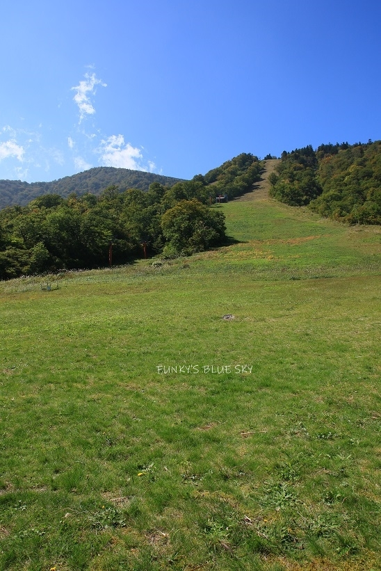 山で、の~~ん び~~り~~~^^_c0145250_08483649.jpg