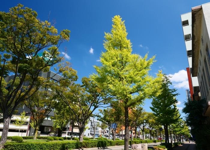 和歌山城へ  2019-10-14 00:00  _b0093754_21305062.jpg