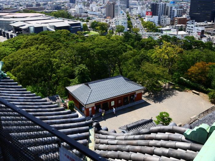 和歌山城へ  2019-10-14 00:00  _b0093754_21333733.jpg