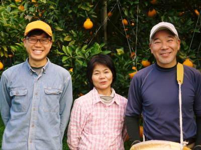 デコポン(肥後ポン) 令和元年度も12月下旬の収穫に向け果皮の色が抜け始めてきました!!_a0254656_17194836.jpg