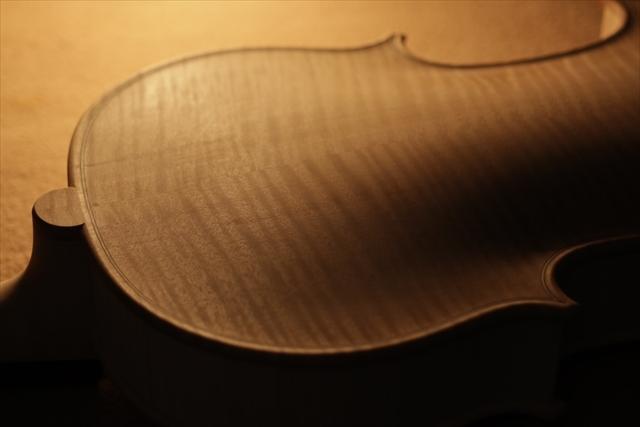 弦楽器フェアのご紹介と、ホワイトヴァイオリン_d0047461_14282373.jpg