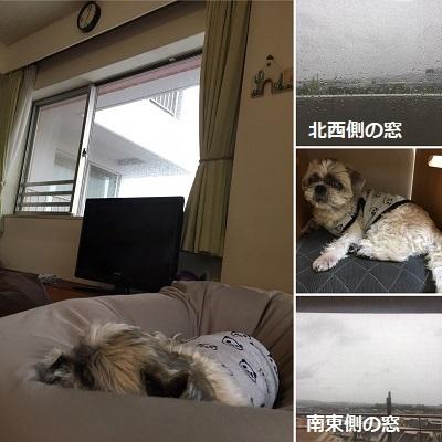 台風19号通過。_f0372998_18475552.jpg