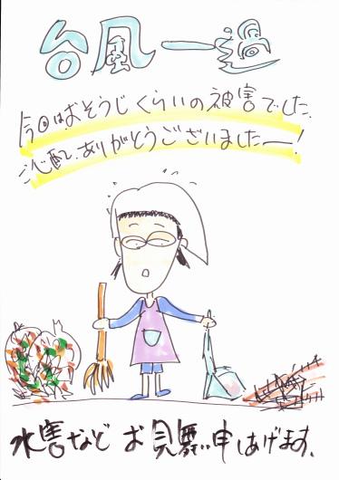 台風一過_b0068302_13371484.jpg