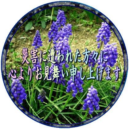 b0044115_11153413.jpg