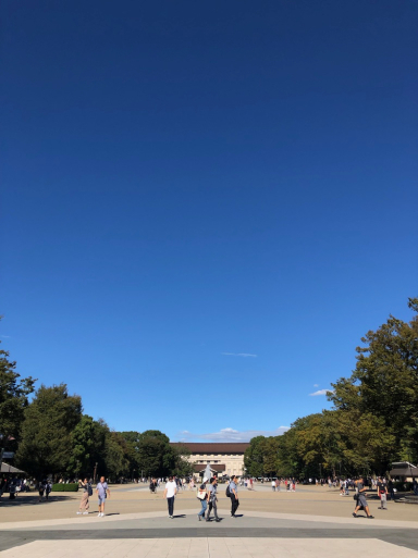 打ち合わせ中止での、見上げる青空。_d0057843_18401146.jpg