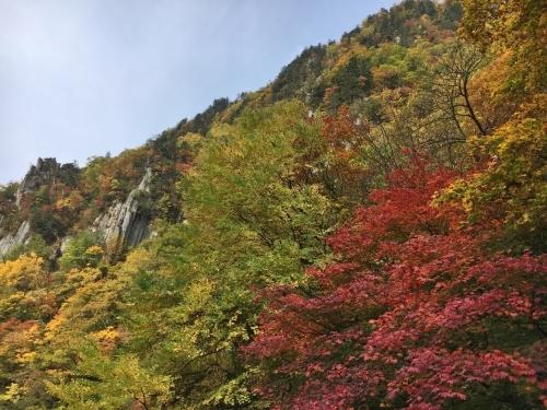 天人峡滝見台の紅葉と美瑛秋庭_e0326953_14491754.jpg
