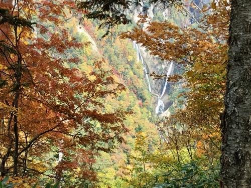 天人峡滝見台の紅葉と美瑛秋庭_e0326953_15034846.jpg