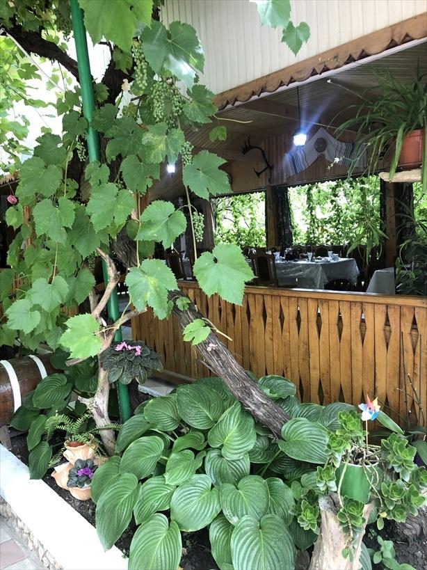 モルドヴァの家庭料理@オルヘイ村_a0092659_17055889.jpg