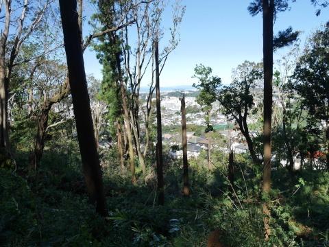 【台風19号の六国見山被害詳報】⓵森林公園内はまるで爆撃跡_c0014967_16443093.jpg