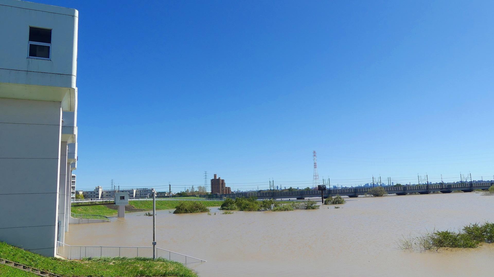 台風 秋ヶ瀬 公園