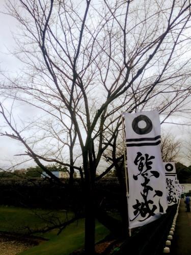 熊本城_d0195183_20460139.jpg