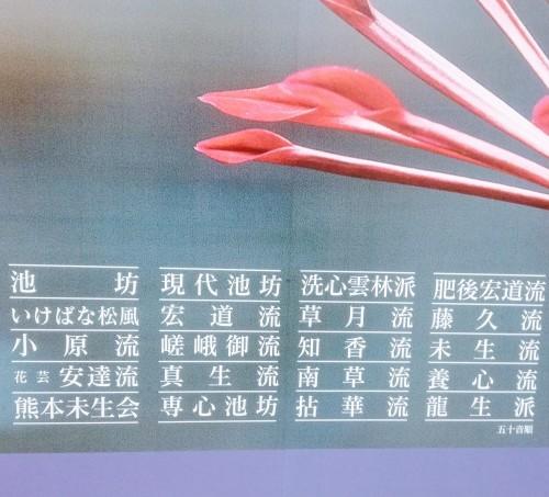 熊本城_d0195183_20482016.jpg