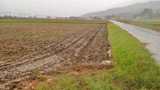 連休の初日、兼業農家は「秋ブチ」でした_c0336902_16440192.jpg