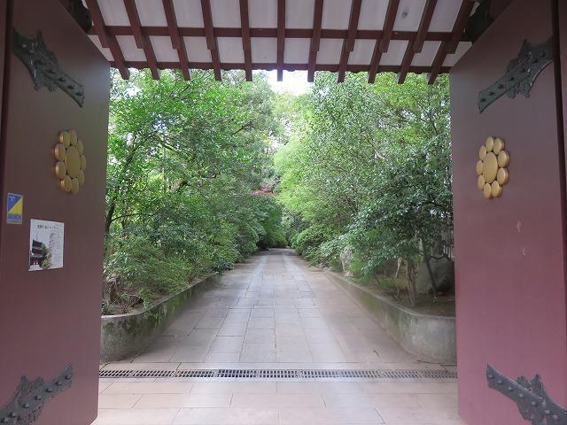東 禅 寺(新江戸百景めぐり㊸)_c0187004_19551673.jpg
