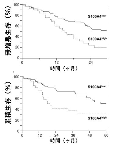 IPFにおける血清S100A4値は疾患進行のバイオマーカーとして有用_e0156318_9392428.png