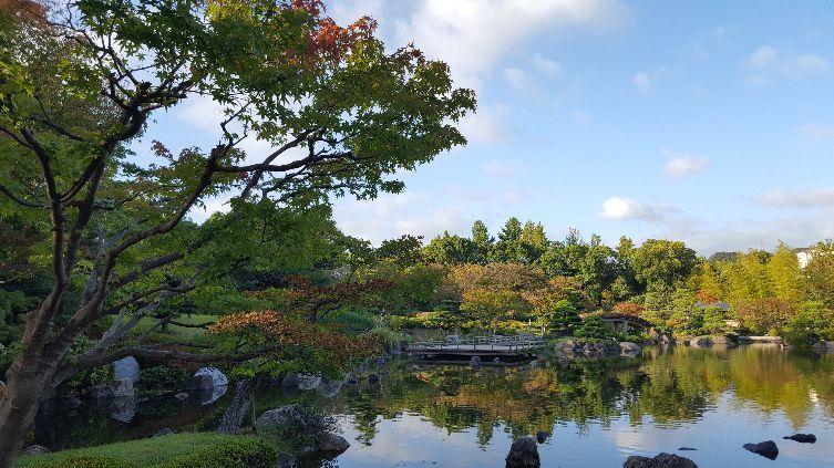 《秋の訪れ》_f0126121_11444615.jpg