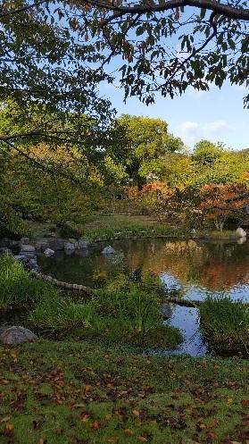 《秋の訪れ》_f0126121_11444654.jpg