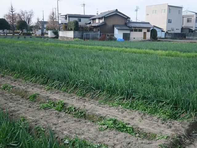 オトナの寺子屋 vol.104_e0017051_10045733.jpg