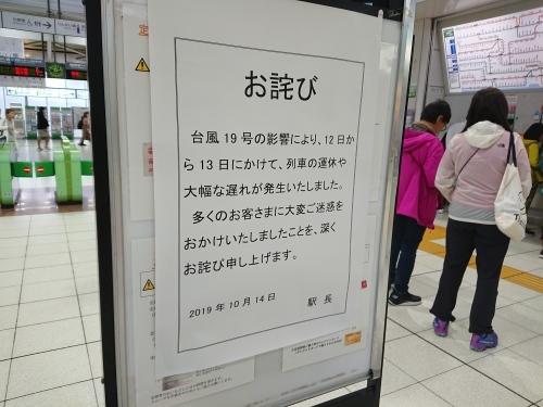 武蔵小杉駅に行ってきた_c0100865_15492627.jpg