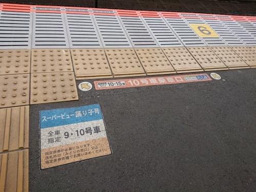 武蔵小杉駅に行ってきた_c0100865_16120242.jpg