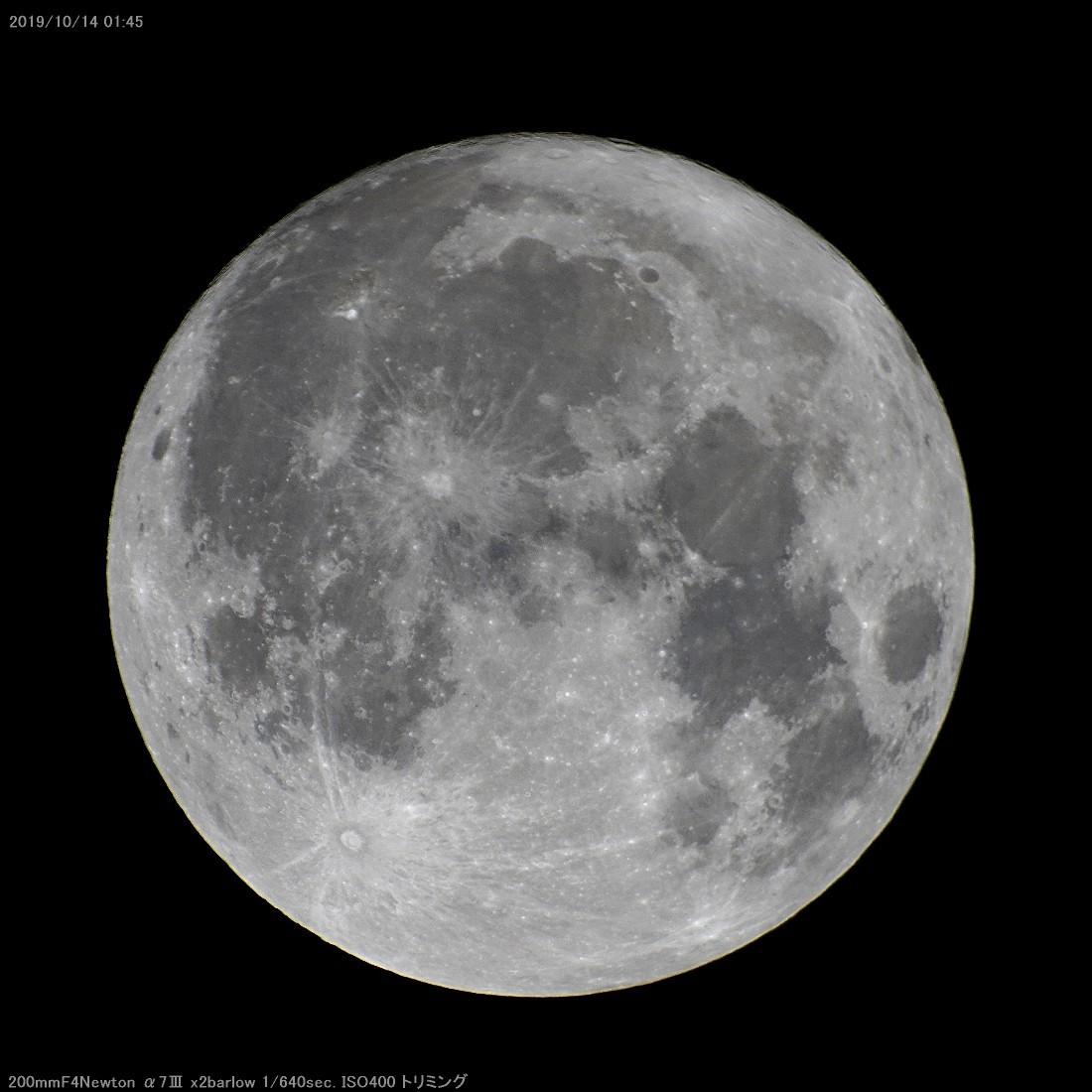 満月4時間半前_a0095470_15132158.jpg