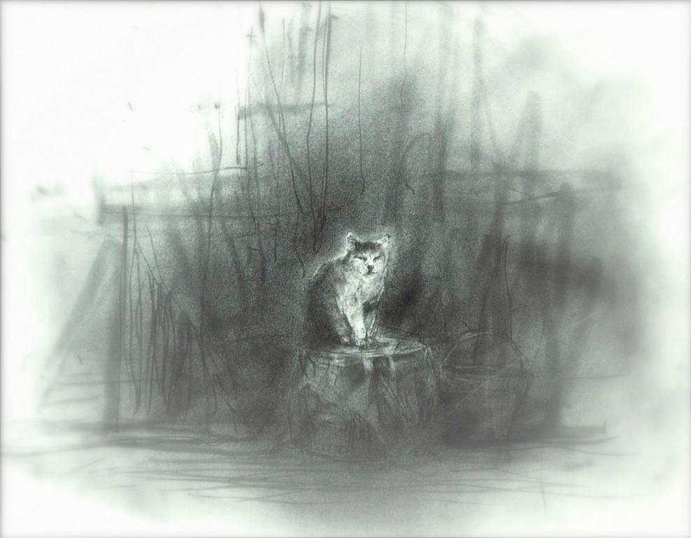 《【アーカイブス 55 】『ヤマセミの渓から ――― ある谷の記憶と追想 》_e0143870_09222134.jpg