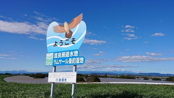 渡良瀬遊水地が巨大湖に変貌!_a0268377_19382976.jpg