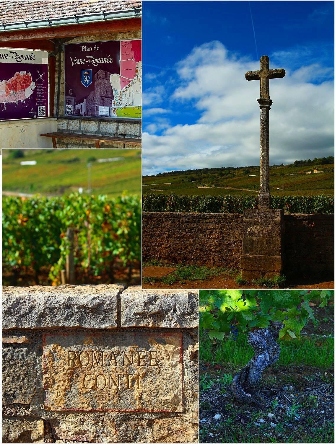 ブルゴーニュ ワイン旅_a0107981_17141776.jpg