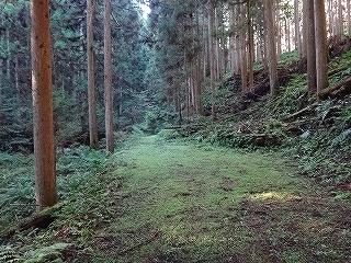 きっと何かある、美山の祢宜洞から神倉谷_e0064783_13461295.jpg