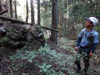 きっと何かある、美山の祢宜洞から神倉谷_e0064783_13505058.jpg
