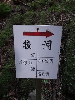 きっと何かある、美山の祢宜洞から神倉谷_e0064783_13505063.jpg