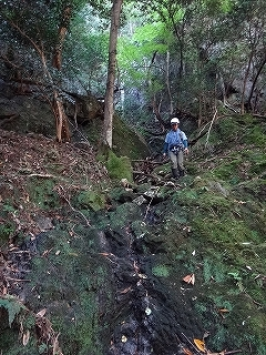 きっと何かある、美山の祢宜洞から神倉谷_e0064783_13522516.jpg