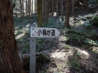 きっと何かある、美山の祢宜洞から神倉谷_e0064783_13532155.jpg