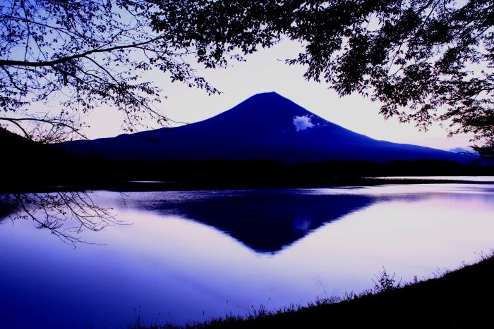 令和元年10月の富士(10)田貫湖夜明け前の富士_e0344396_14484841.jpg