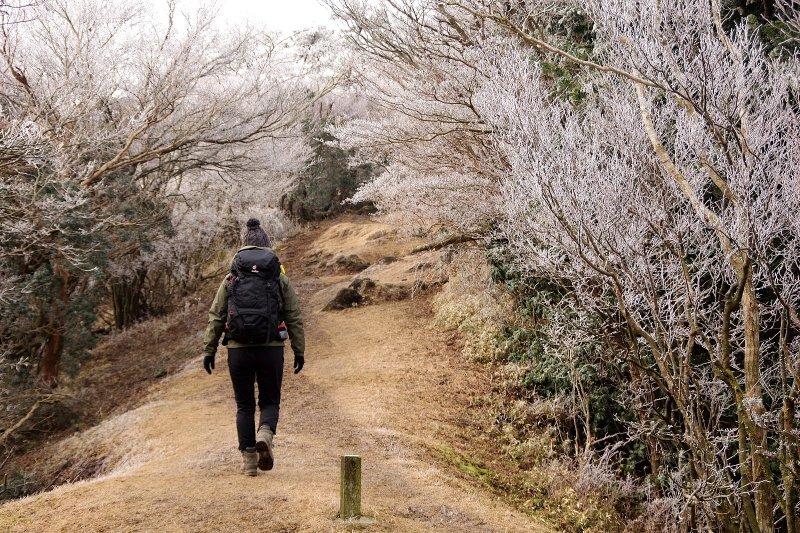 金冠山と達磨山、うなぎ_a0165316_09050123.jpg