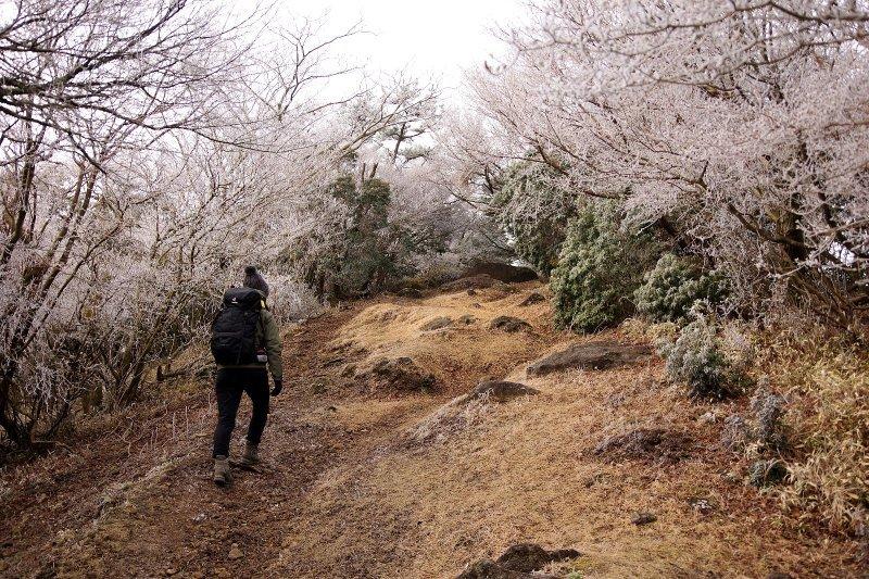 金冠山と達磨山、うなぎ_a0165316_09050221.jpg