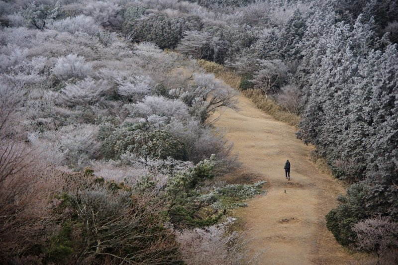 金冠山と達磨山、うなぎ_a0165316_09050381.jpg