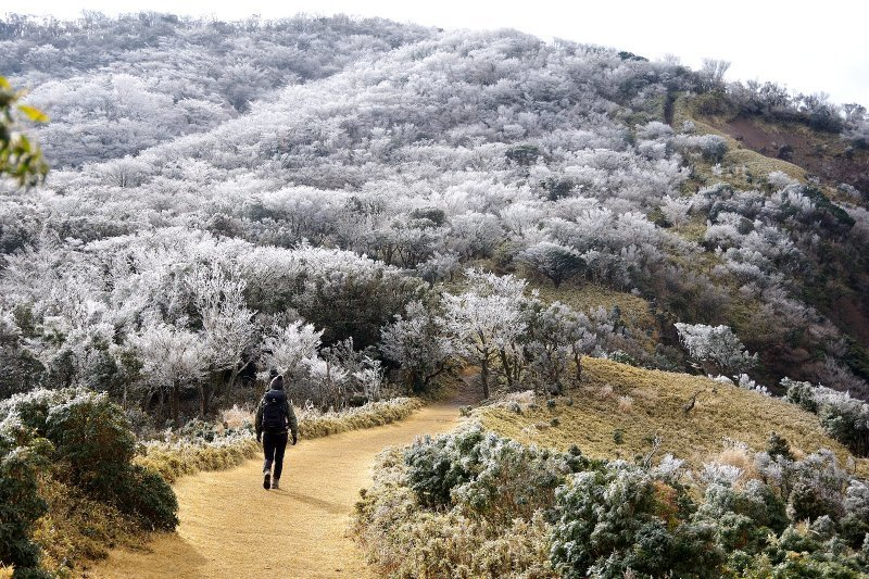 金冠山と達磨山、うなぎ_a0165316_09060004.jpg