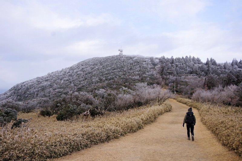 金冠山と達磨山、うなぎ_a0165316_09060038.jpg