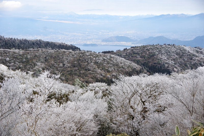 金冠山と達磨山、うなぎ_a0165316_09070485.jpg