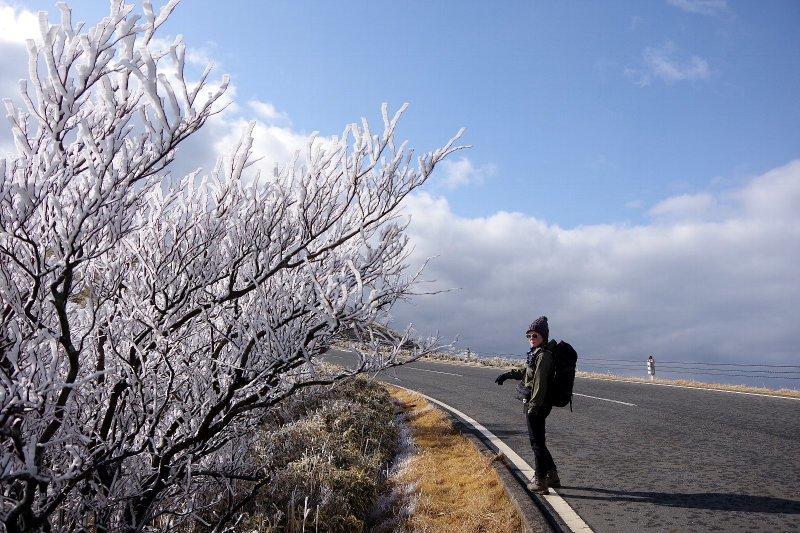 金冠山と達磨山、うなぎ_a0165316_09070520.jpg