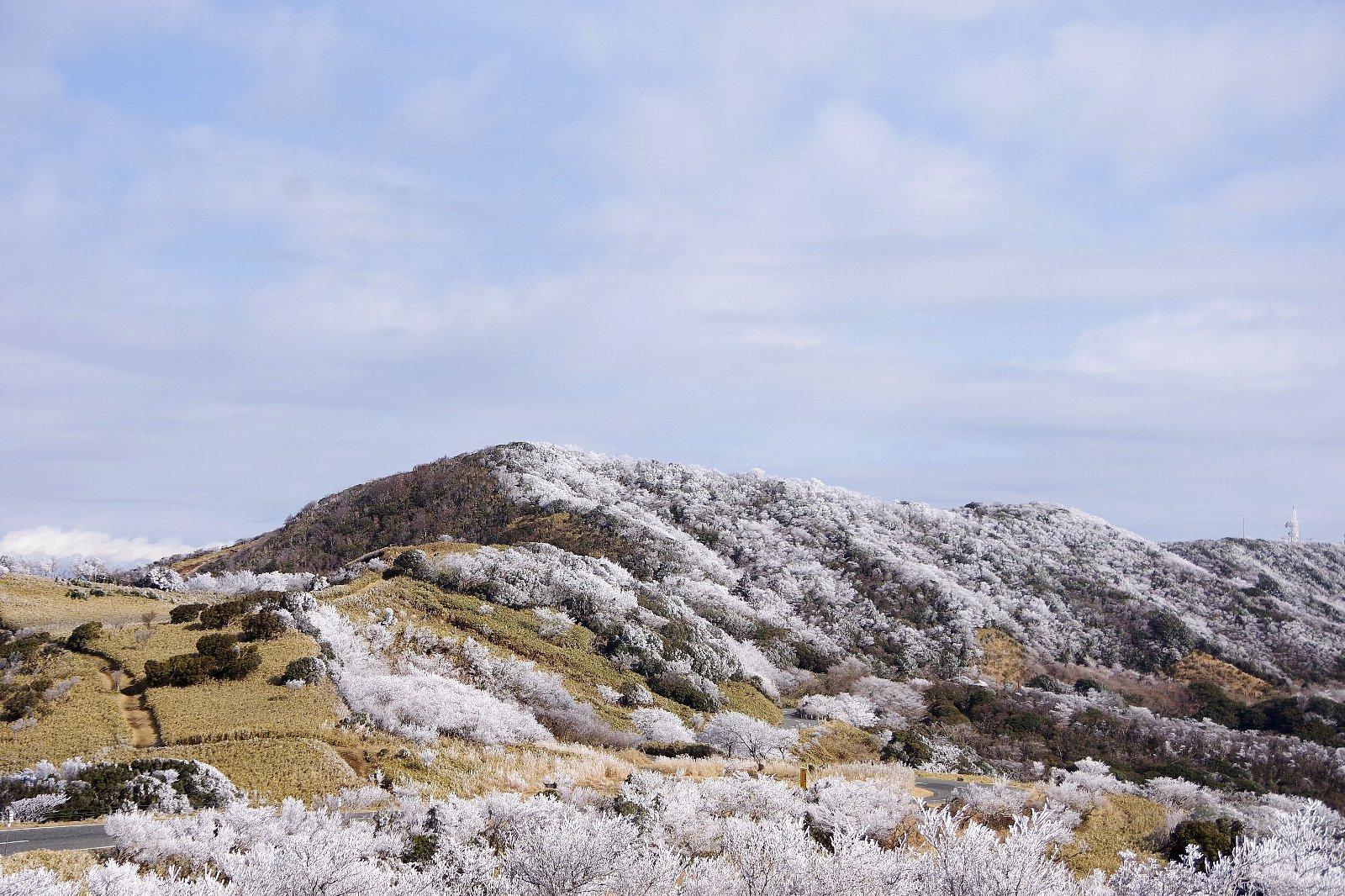 金冠山と達磨山、うなぎ_a0165316_09070633.jpg