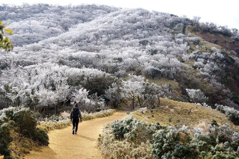 金冠山と達磨山、うなぎ_a0165316_09073738.jpg