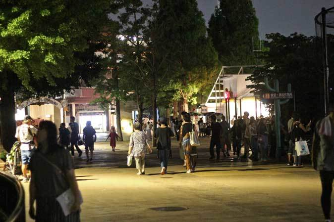 上野・真夏の夜の動物園2019⑥~明るい小獣館B1:カヤネズミと闇夜のハシビロコウ_b0355317_21584050.jpg