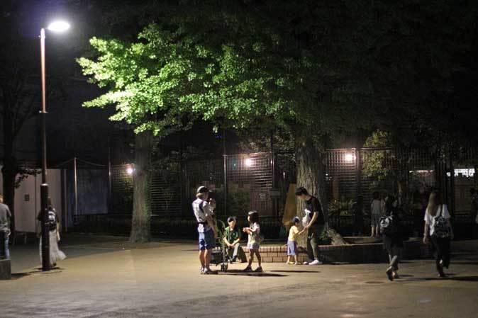 上野・真夏の夜の動物園2019⑥~明るい小獣館B1:カヤネズミと闇夜のハシビロコウ_b0355317_22021371.jpg