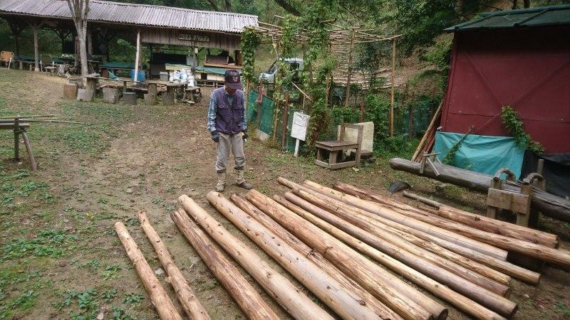 アサギマダラの飛来と林道整備_c0239329_17510368.jpg